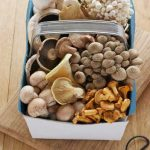 Mushrooms Vitamin B12